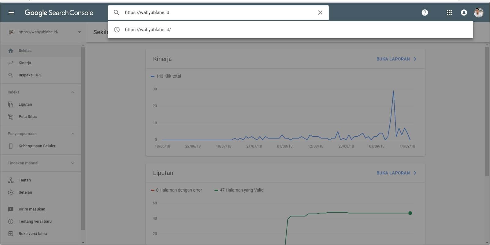 inspeksi url google search console