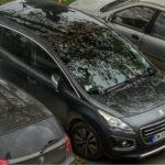 Keuntungan Membeli Mobil Bekas