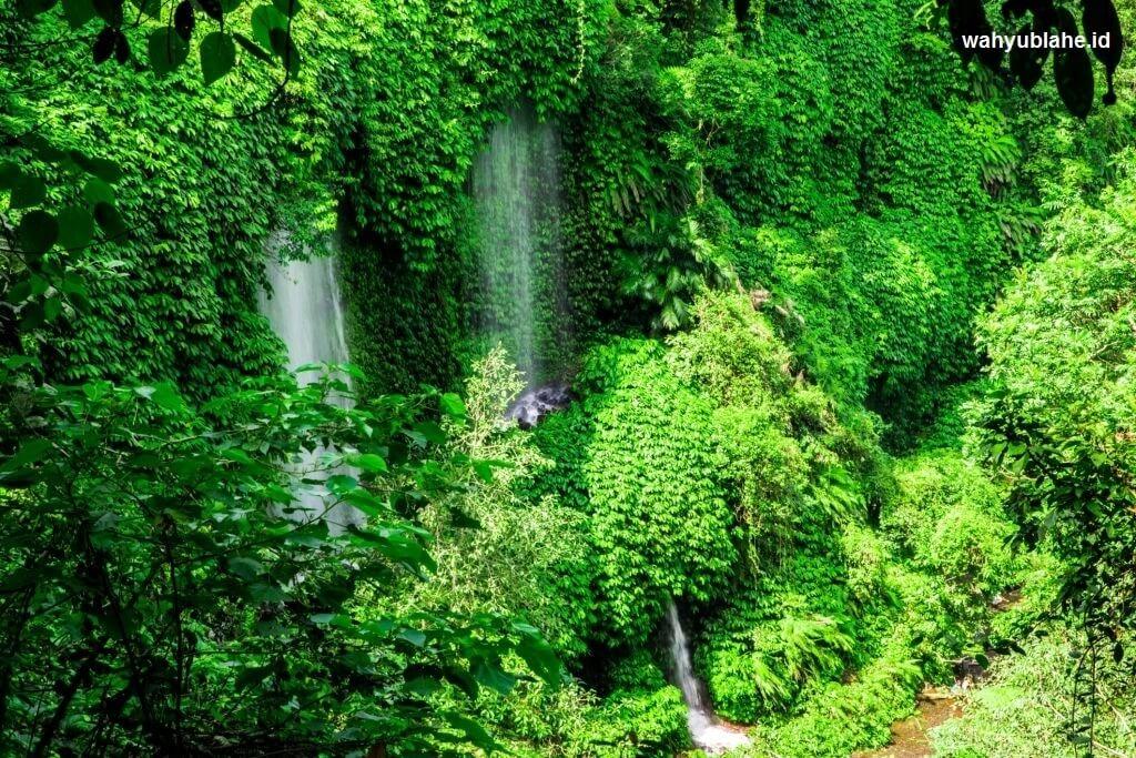 Air Terjun Benang Stokel Lombok