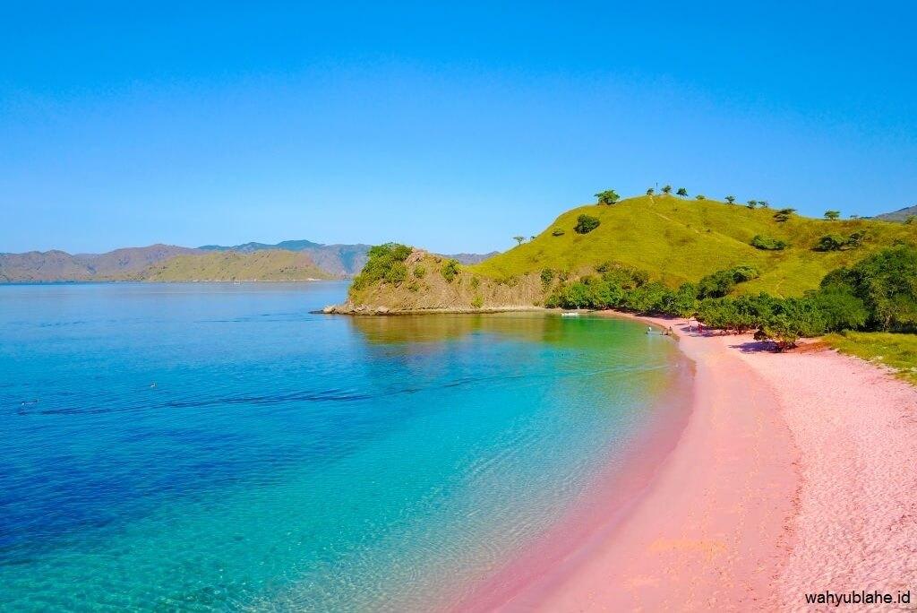 Pantai Pink Pulau Komodo Nusa Tenggara Timur